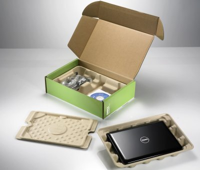 Bamboo, biodegradable packaging for electronics