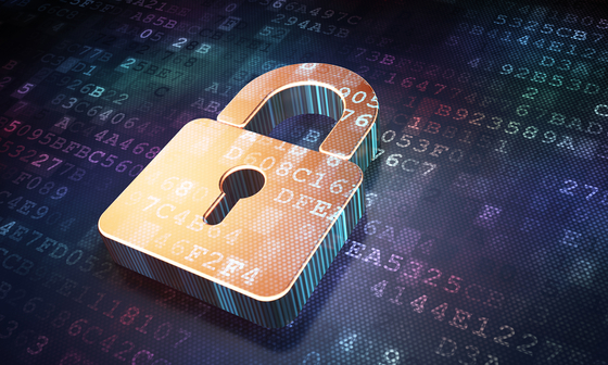 ip security padlock