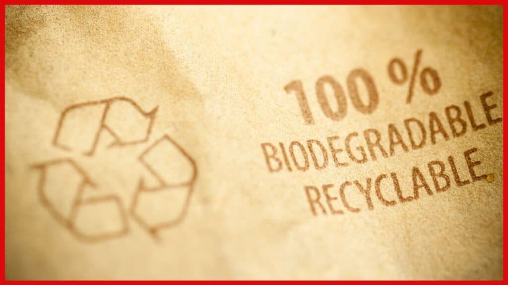 biodegradable boxes for packaging